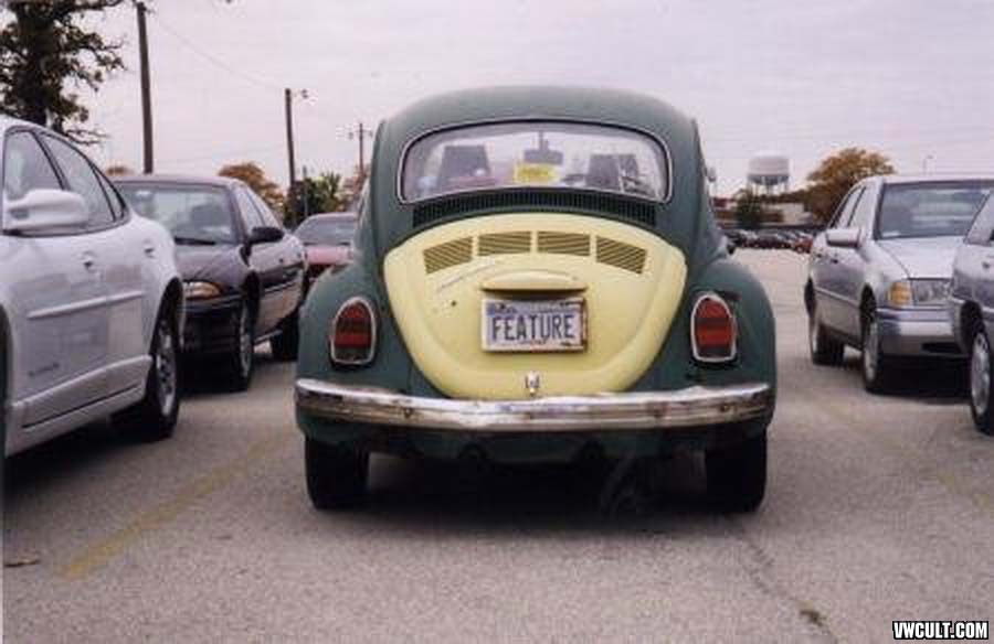 Beetle Feature